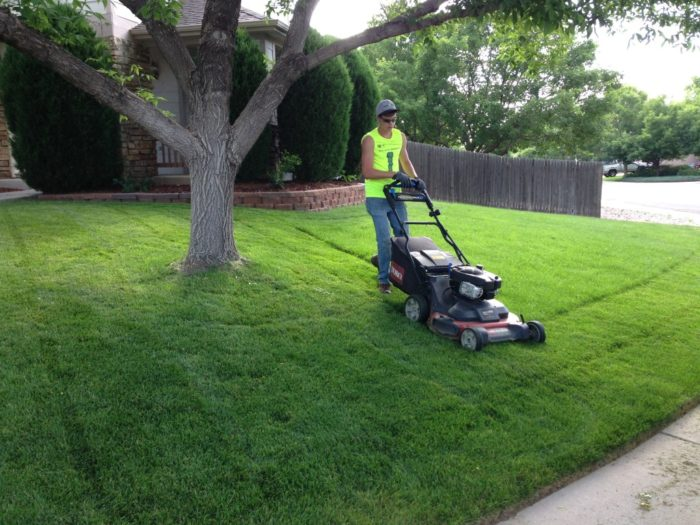 Lawn Service-Pasadena TX Landscape Designs & Outdoor Living Areas-We offer Landscape Design, Outdoor Patios & Pergolas, Outdoor Living Spaces, Stonescapes, Residential & Commercial Landscaping, Irrigation Installation & Repairs, Drainage Systems, Landscape Lighting, Outdoor Living Spaces, Tree Service, Lawn Service, and more.