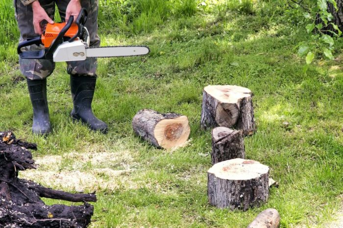 Tree Service-Pasadena TX Landscape Designs & Outdoor Living Areas-We offer Landscape Design, Outdoor Patios & Pergolas, Outdoor Living Spaces, Stonescapes, Residential & Commercial Landscaping, Irrigation Installation & Repairs, Drainage Systems, Landscape Lighting, Outdoor Living Spaces, Tree Service, Lawn Service, and more.